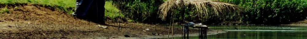 Costa Rica Reisebericht, Unterstand am Flussufer zur Tierbeobachtung. Wenn man mal spektakulaere Bilder von den seltensten Vogelarten und Panzerechsen machen will.